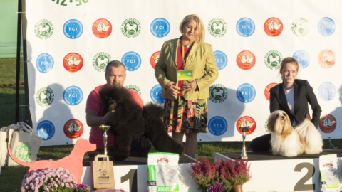 National Dog Show – Zabrze 12.10.2019 – !!! BOG !!!