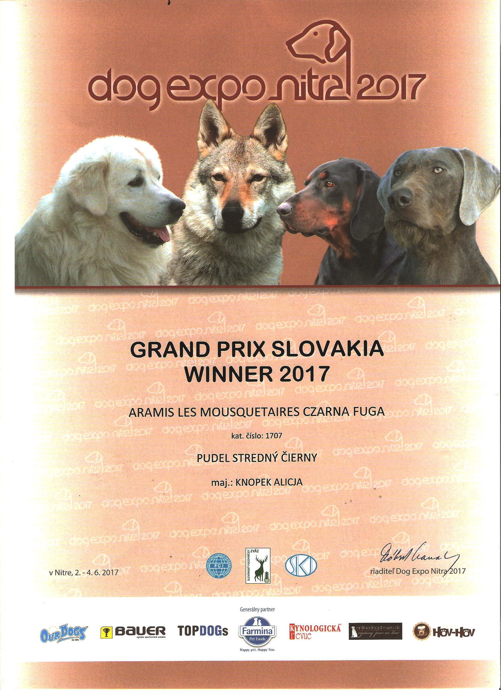 Grand Prix Slovakia 2017