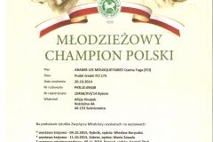 Młodzieżowy Champion Polski