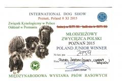 Młodzieżowy Zwycięzca Polski