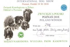 Zwycięzca Polski 2018r.